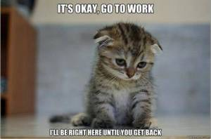 ...and the guilt trip that I gave Ricky when she got hired on Real World.